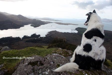 Suzie overlooking Beara