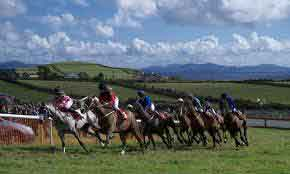 Racing in Dingle