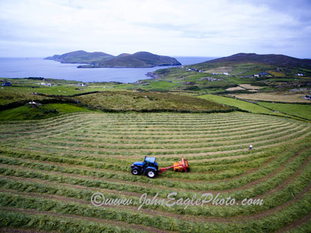 Haymaking in Beara
